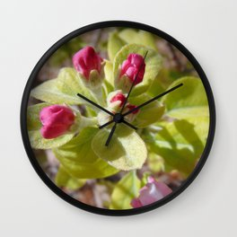 Apple buds Wall Clock