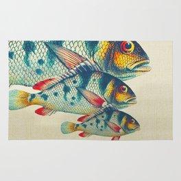 Fish Classic Designs 3 Rug