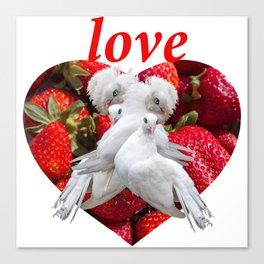 Love and Dove Canvas Print