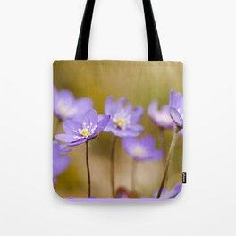 Anemone hepatica II Tote Bag