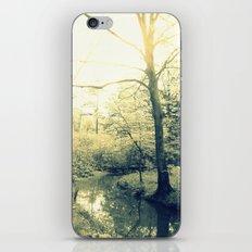 Boggy Sun iPhone & iPod Skin