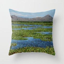 Palo Verde Collectios Throw Pillow