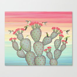 ruby throated hummingbirds & prickly pear cactus Canvas Print