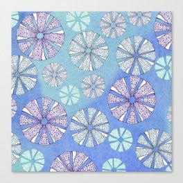 sea urchin blue watercolor Canvas Print
