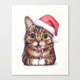 Christmas Animal Santa Cat Canvas Print