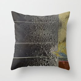 Breadcrumbs: Ugly Duckling Throw Pillow