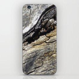 Fissure iPhone Skin