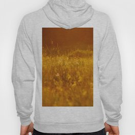 flower field at sunset Hoody