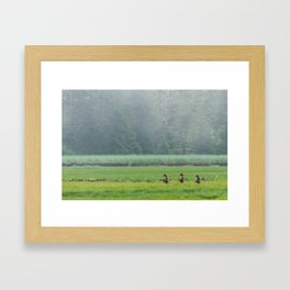 Looking for Goldilocks Framed Art Print
