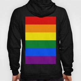 Pride Rainbow Colors Hoody
