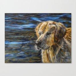 One Wet Golden Retriever by Teresa Thompson Canvas Print