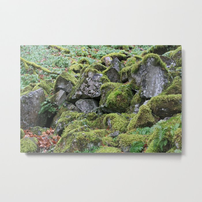 Mossy Rocks Metal Print