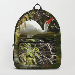 Ibis Dating Place Backpack