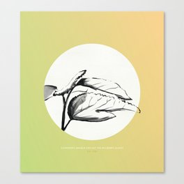 [5.21—5.25] Silkworms Awaken and Eat the Mulberry Leaves Canvas Print