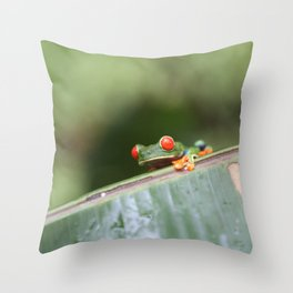 Red eye Frog on leaf Costa Rica Photography Throw Pillow