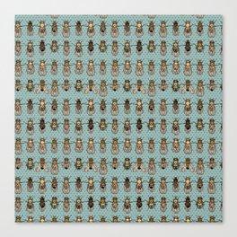 Drosophila Gift Canvas Print