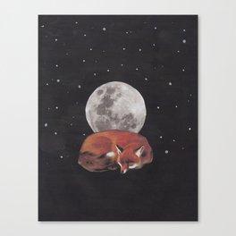 nocturnal animals Canvas Print