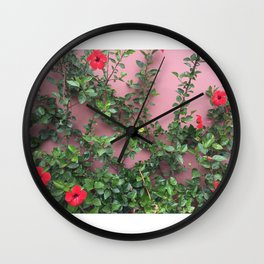 Blooming red hibiscus flowers against a mauve wall Wall Clock