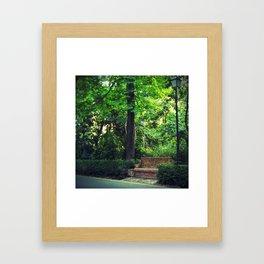 Resting Place Framed Art Print