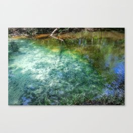 Infuse Canvas Print