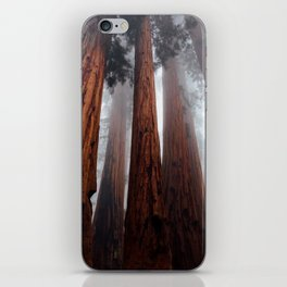 Woodley Forest iPhone Skin