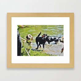 Dog Days of Summer Framed Art Print