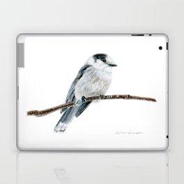 Gray Jay by Teresa Thompson Laptop & iPad Skin