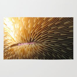 Solitary Coral Rug