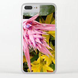 Aechmea pink blossom of the Bromeliaceae family Clear iPhone Case