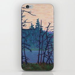Algonquin Wetland, Algonquin Park iPhone Skin