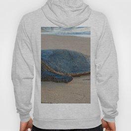 turtle nap Hoody
