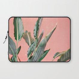 Palm on pink | Botanical photography print | Spain travel photo art Laptop Sleeve