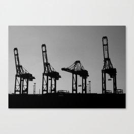 Saluting Cranes Canvas Print