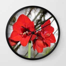 Red Amaryllis Wall Clock