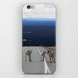 Bou Butts iPhone Skin