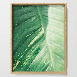The green leaf | Botanical fine art photography print | Colorful pastel tones photo print Serving Tray