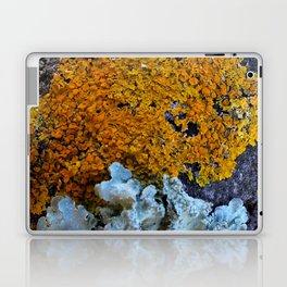 Tree Bark Pattern # 6 with Orange and Blue Lichen Laptop & iPad Skin