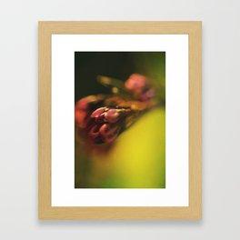 Une Fleur Framed Art Print