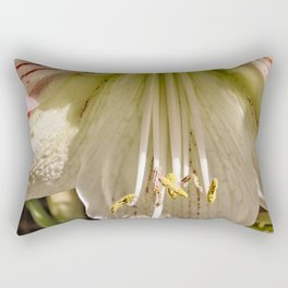 Beautiful amaryllis hippeastrum closeup Rectangular Pillow