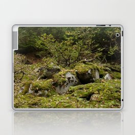 Mossy Rocks Laptop & iPad Skin