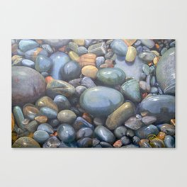 River Stones in Oil Canvas Print