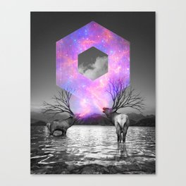 Made of Star Stuff Canvas Print