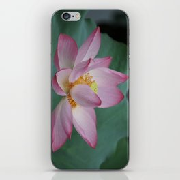 Hangzhou Lotus iPhone Skin