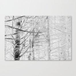 x-ray branch Canvas Print