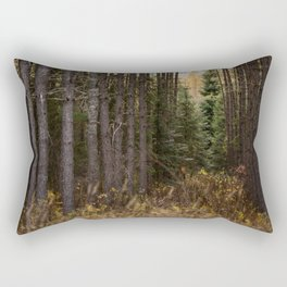 Show me the path Rectangular Pillow