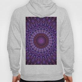 Mandala in blue,pink and purple tones Hoody