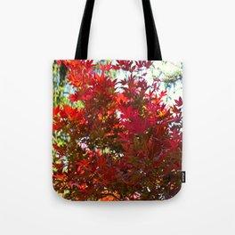 A Fiery Breeze Tote Bag