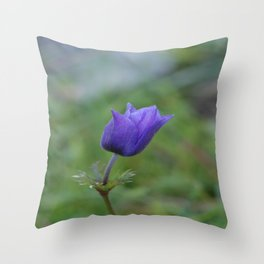 Lone Blue-Purple Anemone Throw Pillow