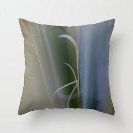 California Cactus Up Close Throw Pillow