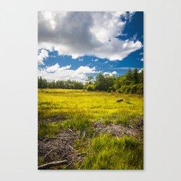 Saaremaa 1.3 Canvas Print